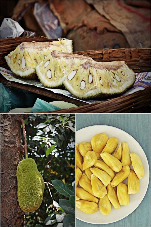 Jackfruit Tile