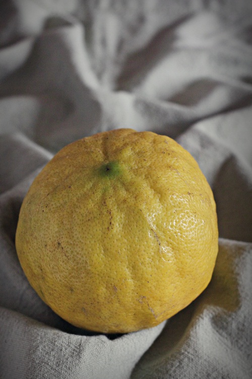 Vadukapuli Naranga or Giant Bitter Lemon