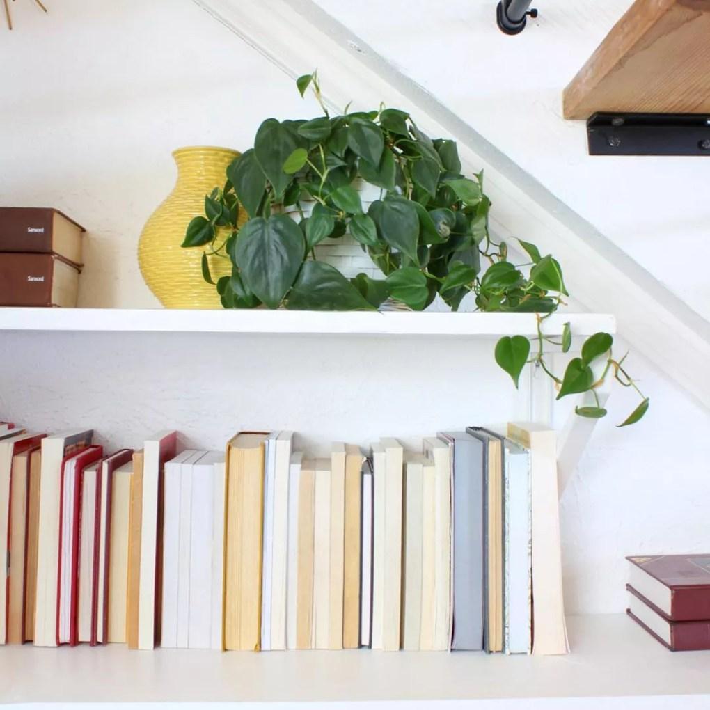 Dwell Aware bookshelf with backward facing books.