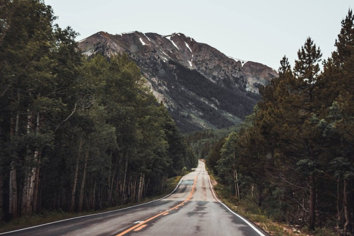 mountain and road and trees and grass and sky in aspen