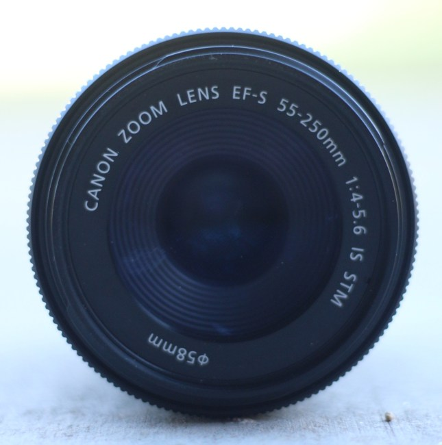 camera lens with ground and grass
