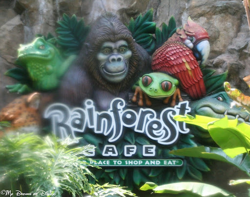 Disney Dining Review: Rainforest Cafe