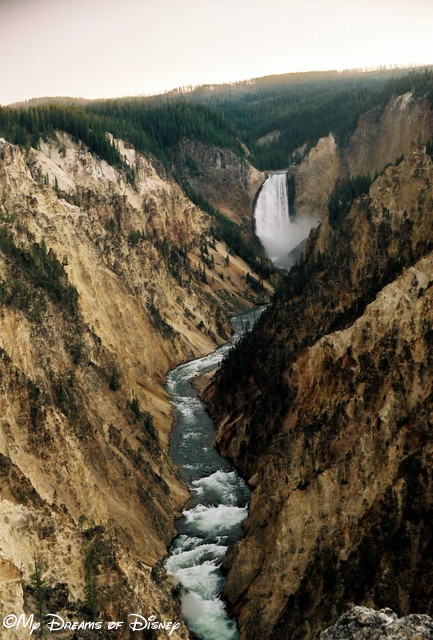 The Good Life...is getting a shot of Lower Yellowstone Falls in Yellowstone National Park...