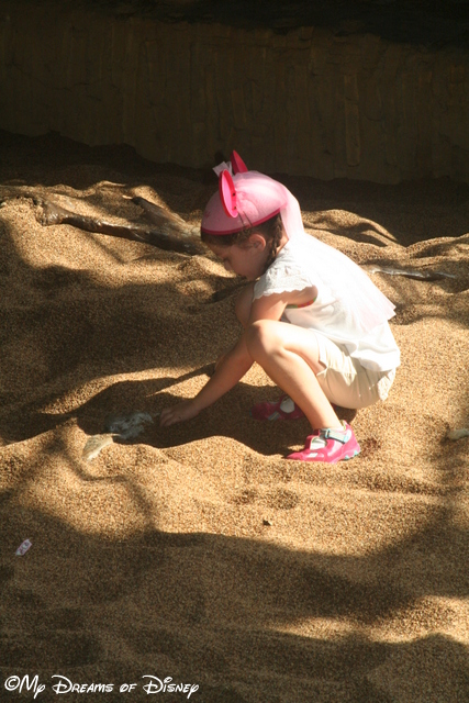 Sophie loved this spot in DinoLand, U.S.A., when she could dig all she wanted!