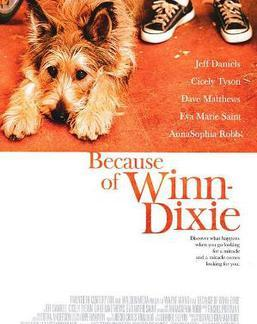 The movie poster for Because of Winn-Dixie.