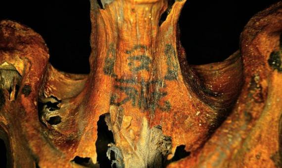 3,000-Year Old Tattooed Mummy Belongs to Egyptian Woman 23