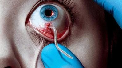 FX-billboard-The Strain-worm