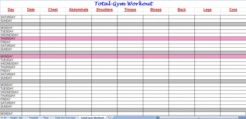 Fitness Plan Spreadsheet  Workout EverydayentropyCom