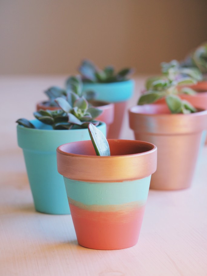 Painted terracotta pots | Five last minute Christmas DIY gifts