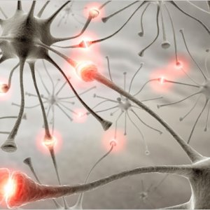 Train Your Brain For Better Memory