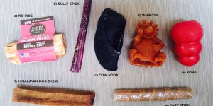 selection of dog chews