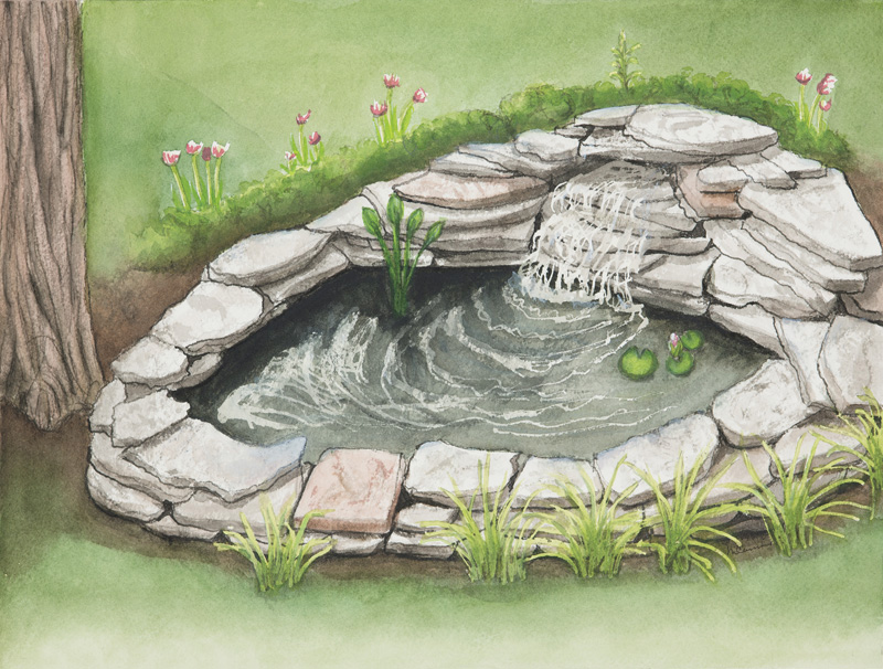 12 Steps To Building a Small Pond for your Backyard ... on Small Backyard Pond  id=93419