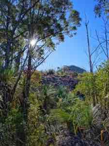 Mount Greville South East Ridge