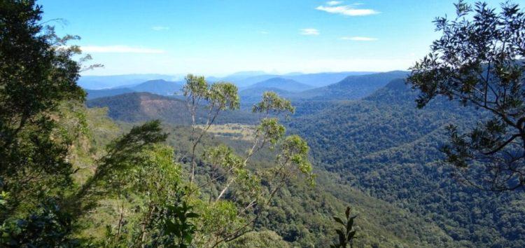Border Ranges NP - Bar Mountain Lookout