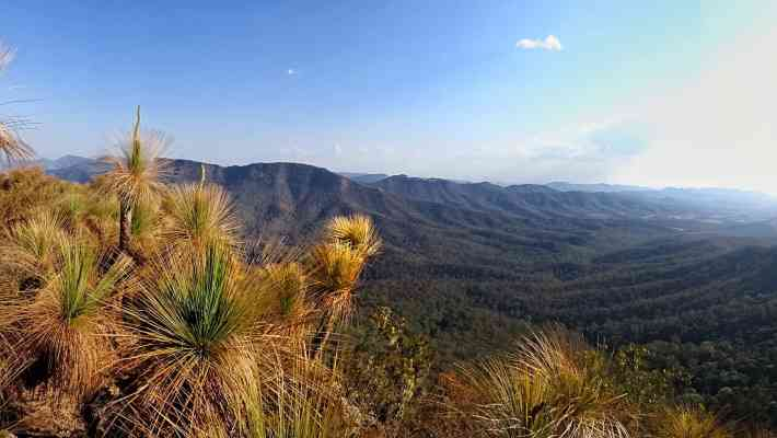 Mount Cordeaux & Mount Mitchell: Two Lovely & Easy Hikes With Spectacular Views Near Brisbane