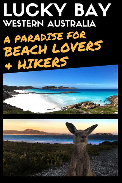 lucky bay western australia kangaroo hike beach