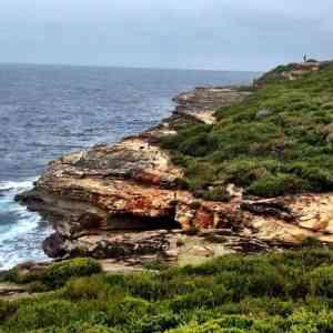 Bundeena - Wattamolla Coastal Walk Sydney Royal National Park 04