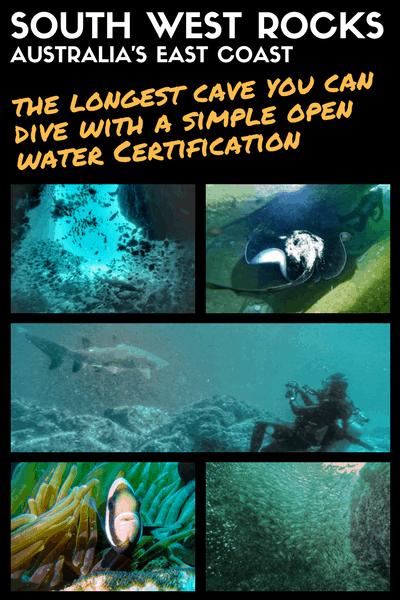 SOUTH WEST ROCKS - fish rock cave - diving - australia