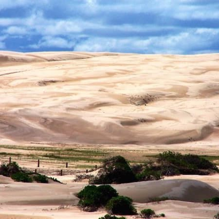 port stephens - anna bay dunes 03