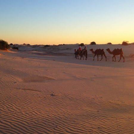 port stephens - anna bay dunes 04