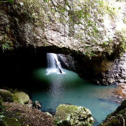 Springbrook Natural Bridge Cave 2