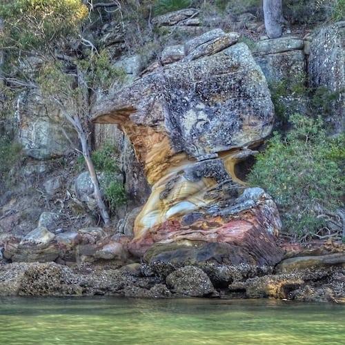 ku ring gai chase national park rock river cruise