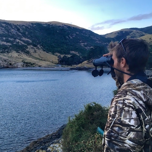 Watching the water with binoculars hoping to see little penguins coming back to shore at Pohatu