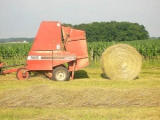 round bale of hay 8