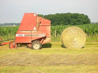 round bale of hay 9
