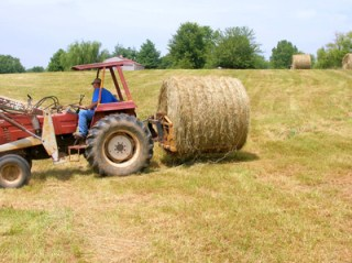 moving round bales 4