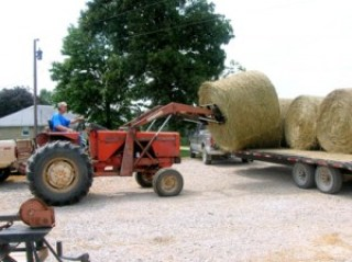 unloading round bales from a trailer