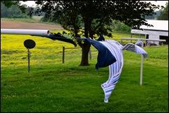 clothesline 3