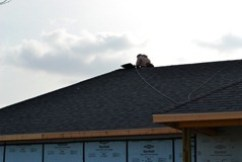 new roof 56