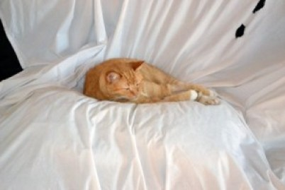 Leo futon