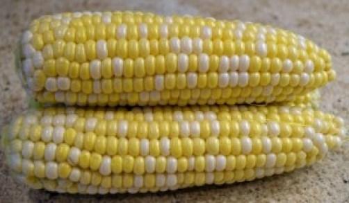 local sweet corn