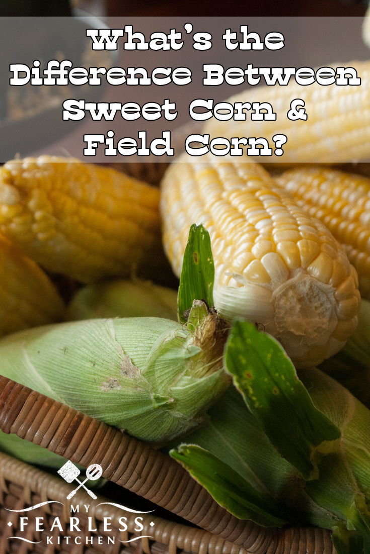 What's the Difference Between Sweet Corn and Field Corn? from My Fearless Kitchen. Sweet corn is very different from field corn. See the differences in how they are harvested and used for food.