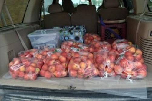 truck full of apples