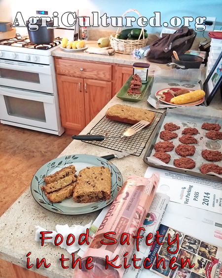 Food Safety In The Kitchen - My Fearless Kitchen