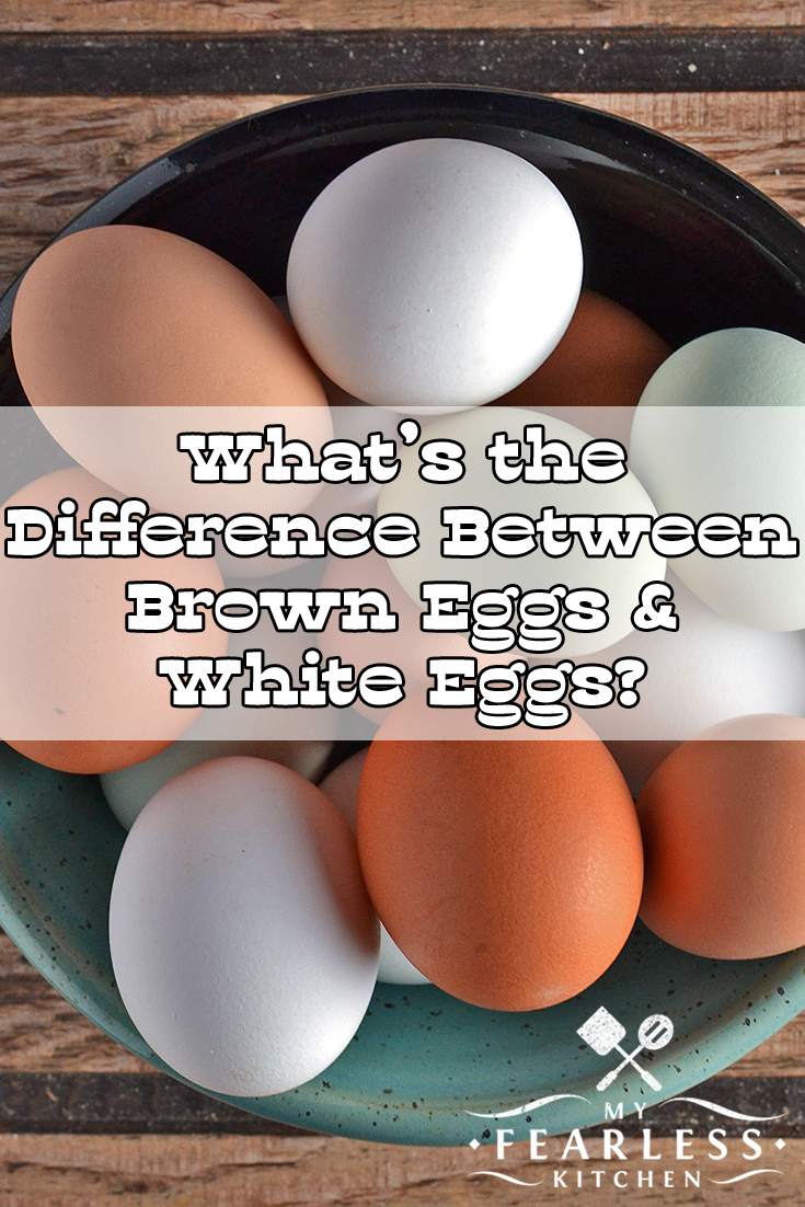 What's the Difference Between Brown Eggs & White Eggs? from My Fearless Kitchen. There is a difference between brown and white eggs. But it's probably not what you think, and you can't tell after you throw away the eggshell! #kitchentip #brownegg #whiteegg #eggs