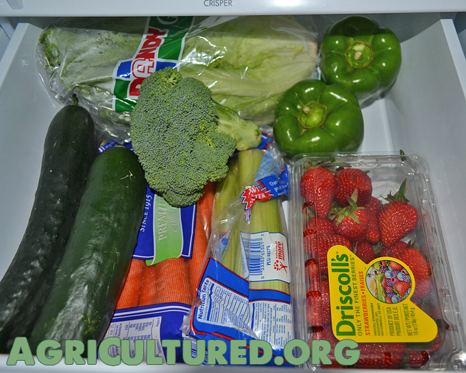 foods like carrots, cucumbers, lettuce, broccoli, cauliflower, peppers, and berries should be stored in the high humidity crisper drawer.