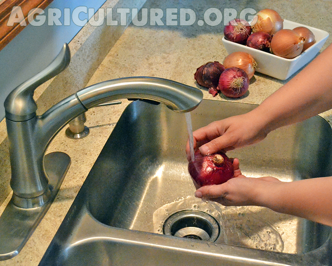 How To Wash Fresh Produce My Fearless Kitchen