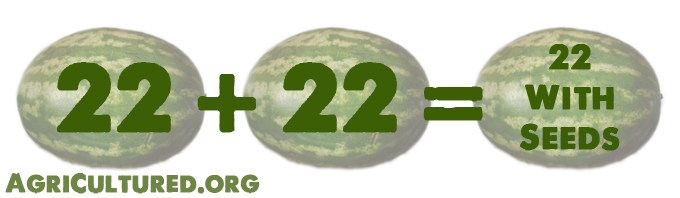 Watermelons have 22 chromosomes. Breeding 2 regular watermelon plants gives you another regular watermelon plant, and watermelons with seeds.