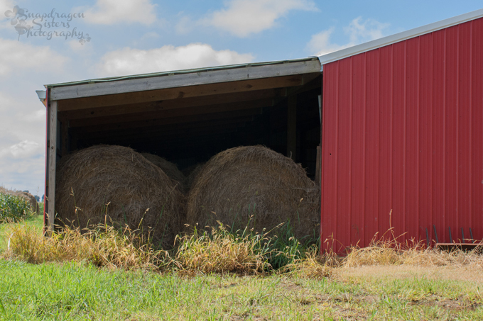 We store round bales of hay in the barn to feed the cows during the winter.