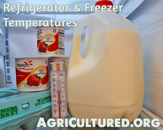Refrigerator And Freezer Temperatures My Fearless Kitchen