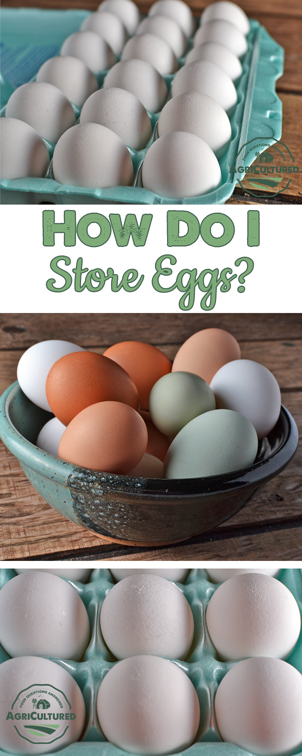 How Do I Store Eggs? - My Fearless Kitchen