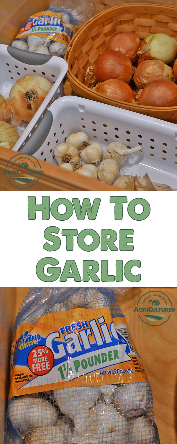 How to Store Garlic on AgriCultured. You can buy garlic in bulk so you never run out! As long as you store it properly, garlic can be kept for 3-5 months, or even longer in your freezer.