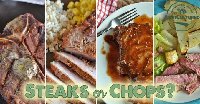 Steaks or Chops? from AgriCultured. What is the difference between steaks and chops? One is beef and one is pork, but they are actually more similar than you think!