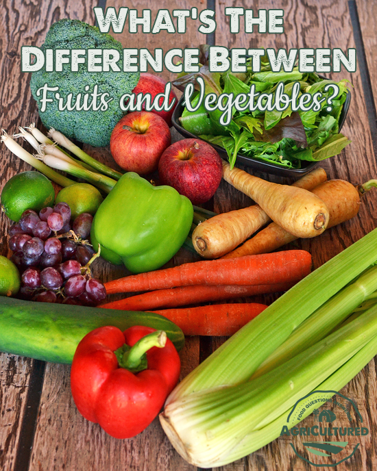 Are These Fruits or Vegetables? from AgriCultured. Do you know the difference between fruits and vegetables? No matter what you call them, fruits and vegetables are an important part of a healthy diet.