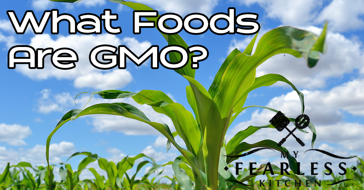 What Foods Are GMOs? - My Fearless Kitchen