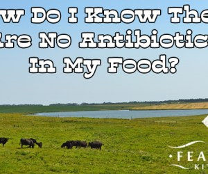 no-antibiotics-in-food-featured